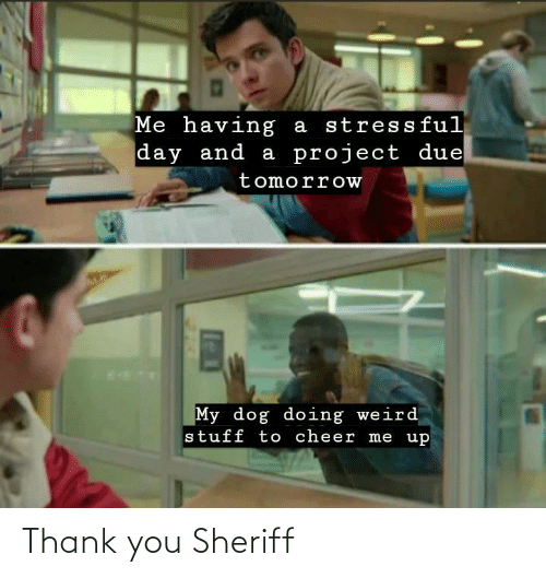 Thank You, Sheriff, and You: Thank you Sheriff
