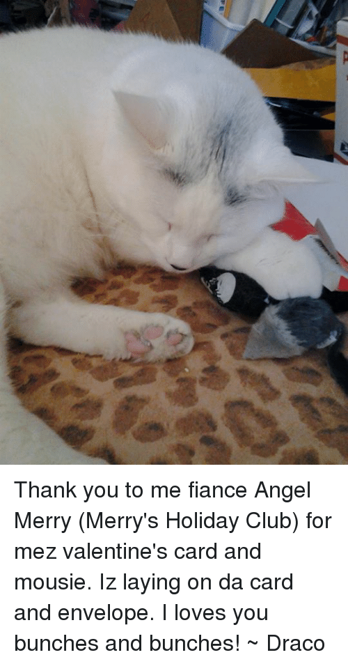 Club, Memes, and Valentine's Card: Thank you to me fiance Angel Merry (Merry's Holiday Club) for mez valentine's card and mousie. Iz laying on da card and envelope. I loves you bunches and bunches! ~ Draco