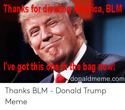 Donald Trump, Meme, and Trump: Thanks for dividingica, BLM  I've got this oneh the bag now!  donaldmeme.com Thanks BLM - Donald Trump Meme