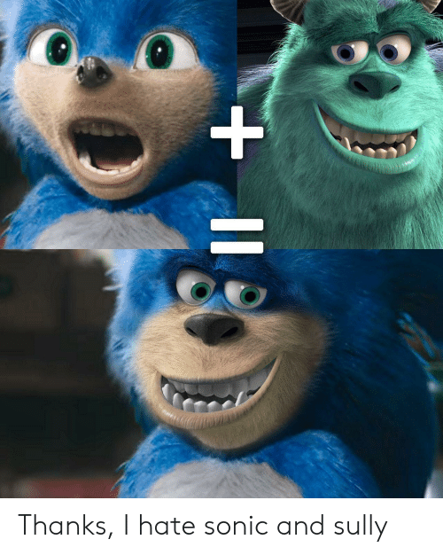 Thanks I Hate Sonic and Sully   Sonic Meme on ME.ME