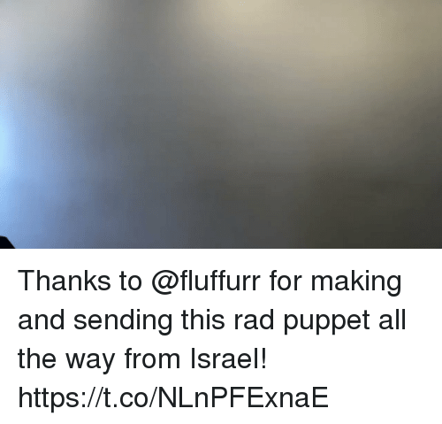 Memes, Israel, and Rad: Thanks to @fluffurr for making and sending this rad puppet all the way from Israel! https://t.co/NLnPFExnaE