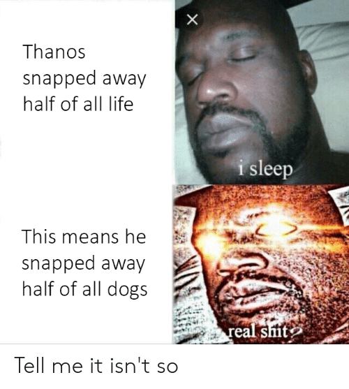 Dogs, Life, and Thanos: Thanos  snapped away  half of all life  leep  i s  This means he  snapped away  half of all dogs Tell me it isn't so