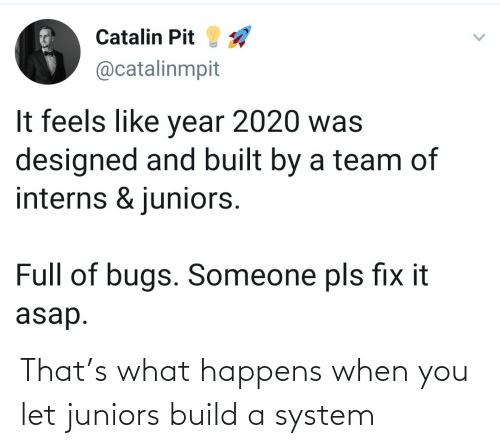 Build A, You, and System: That's what happens when you let juniors build a system