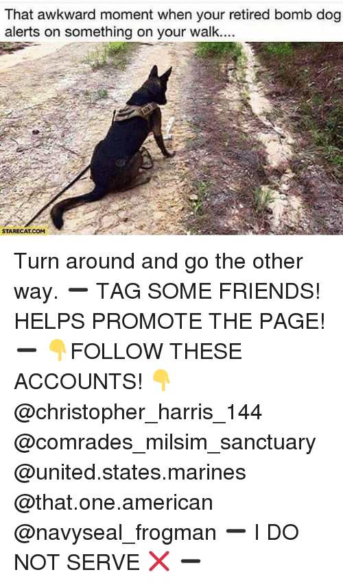 Memes, Awkward, and Marines: That awkward moment when your retired bomb dog  alerts on something on your walk.  STARECAT COM Turn around and go the other way. ➖ TAG SOME FRIENDS! HELPS PROMOTE THE PAGE! ➖ 👇FOLLOW THESE ACCOUNTS! 👇 @christopher_harris_144 @comrades_milsim_sanctuary @united.states.marines @that.one.american @navyseal_frogman ➖ I DO NOT SERVE ❌ ➖