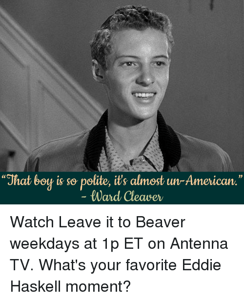 Eddie Haskell Quotes Fascinating ✅ 25 Best Memes About Cleaver  Cleaver Memes