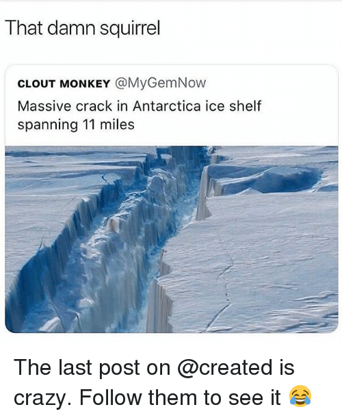 Crazy, Memes, and Monkey: That damn squirrel  CLOUT MONKEY @MyGemNow  Massive crack in Antarctica ice shelf  spanning 11 miles The last post on @created is crazy. Follow them to see it 😂