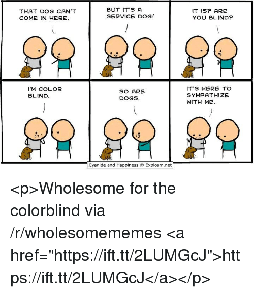 "Dogs, Wholesome, and Happiness: THAT DOG CAN'T  COME IN HERE.  BUT IT'S A  SERVICE DOG!  IT ISP ARE  YOU BLIND?  I'M COLOR  BLIND  SO ARE  DOGS.  ITS HERE TO  SYMPATHIZE  WITH ME.  Cyan.de and Happiness © Explosm.net「 <p>Wholesome for the colorblind via /r/wholesomememes <a href=""https://ift.tt/2LUMGcJ"">https://ift.tt/2LUMGcJ</a></p>"