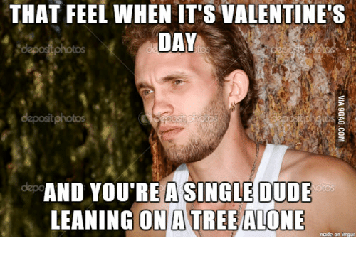 Funny Memes About Being Single On Valentines Day : ✅ best memes about really really really really really funny