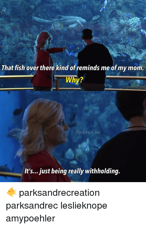Memes, Fish, and Kindness: That fish over there kind of reminds me of my mom.  Why?  arks, n.rec  It's... just being really withholding. 🐠 parksandrecreation parksandrec leslieknope amypoehler