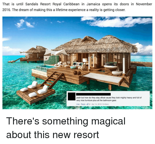 that is until sandals resort royal caribbean in jamaica opens 2668393 ✅ 25 best memes about sandals resort sandals resort memes