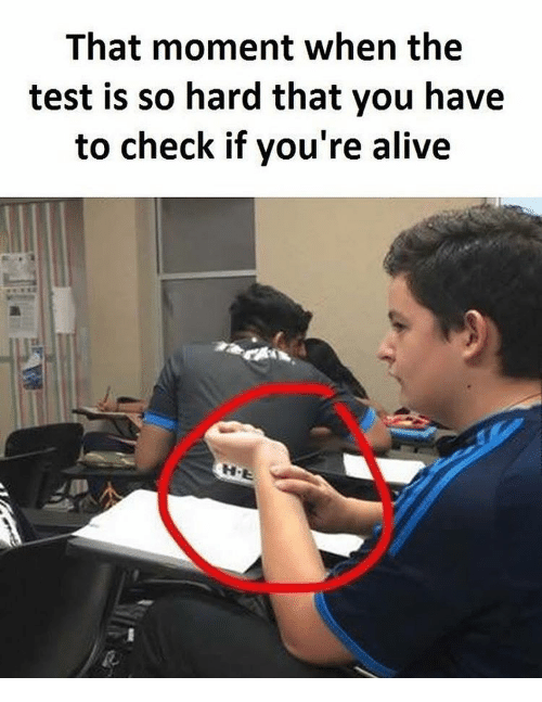 Alive, Memes, and Test: That moment when the  test is so hard that you have  to check if you're alive