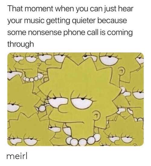 Music, Phone, and Nonsense: That moment when you can just hear  your music getting quieter because  some nonsense phone call is coming  through meirl