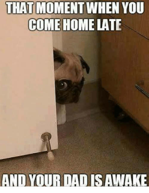 Image result for coming home late meme