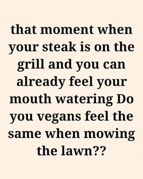 Dank, 🤖, and Can: that moment when  your steak is on the  grill and you can  already feel your  mouth watering Do  you vegans feel the  same when mowing  the lawn??