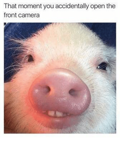 Dank, Camera, and Open: That moment you accidentally open the  front camera