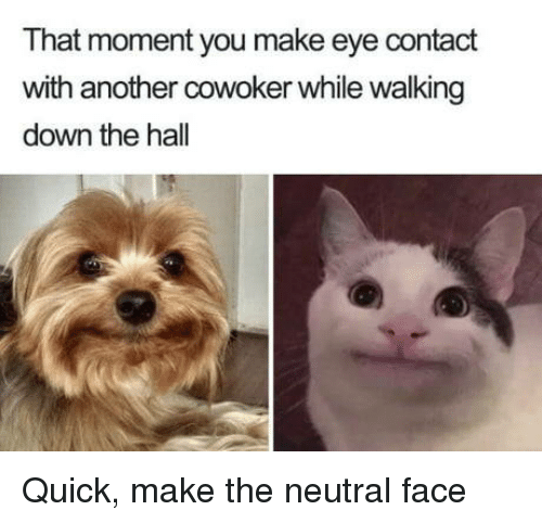 Another, Eye, and Down: That moment you make eye contact  with another cowoker while walking  down the hall Quick, make the neutral face