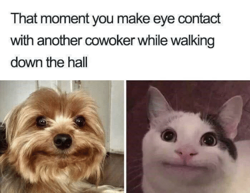 Another, Eye, and Down: That moment you make eye contact  with another cowoker while walking  down the hall