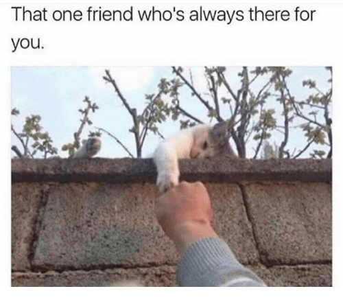 One, Friend, and You: That one friend who's always there for  you.
