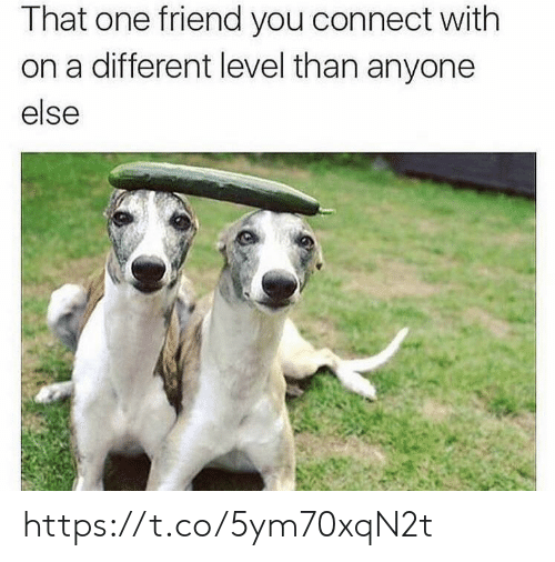 Memes, 🤖, and One: That one friend you connect with  on a different level than anyone  else https://t.co/5ym70xqN2t