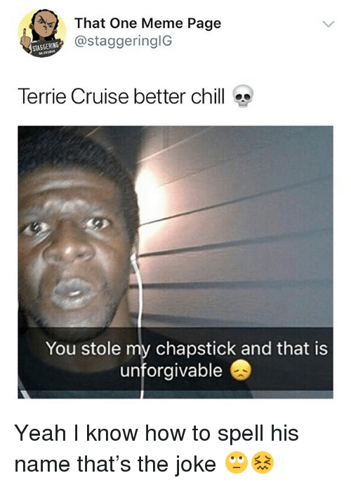 Chill, Meme, and Yeah: That One Meme Page  @staggeringlG  STAGGERING  Terrie Cruise better chill  You stole my chapstick and that is  unforgivable Yeah I know how to spell his name that's the joke 🙄😖