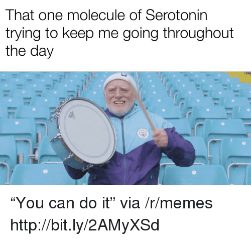 """Memes, Http, and Can: That one molecule of Serotonin  trying to keep me going throughout  the day """"You can do it"""" via /r/memes http://bit.ly/2AMyXSd"""
