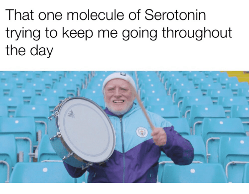 That One Molecule of Serotonin Trying to Keep Me Going Throughout ...