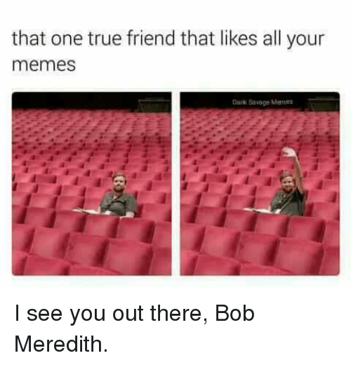 Memes, Savage, and True: that one true friend that likes all your  memes  Dark Savage Mannes I see you out there, Bob Meredith.