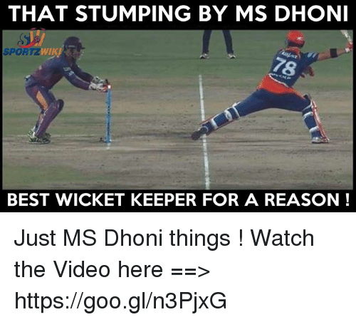 Memes, Best, and Video: THAT STUMPING BY MS DHONI  WIKI  SPOR  BEST WICKET KEEPER FOR A REASON Just MS Dhoni things !  Watch the Video here ==> https://goo.gl/n3PjxG