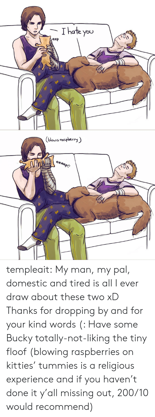 Kitties, Target, and Tumblr: Thate you  eep  TempleAr   (blouos raspberry  eeeep!  TempleAu templeait: My man, my pal, domestic and tired is all I ever draw about these two xD Thanks for dropping by and for your kind words (: Have some Bucky totally-not-liking the tiny floof (blowing raspberries on kitties' tummies is a religious experience and if you haven't done it y'all missing out, 200/10 would recommend)