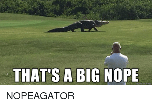 Nope, Big, and Made: THAT'S A BIG NOPE  made on nngur