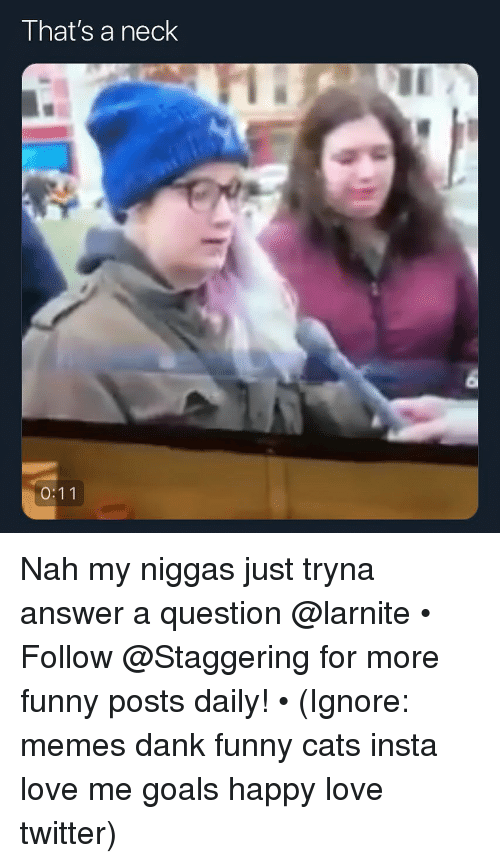 Cats, Dank, and Funny: That's a neck Nah my niggas just tryna answer a question @larnite • ➫➫➫ Follow @Staggering for more funny posts daily! • (Ignore: memes dank funny cats insta love me goals happy love twitter)