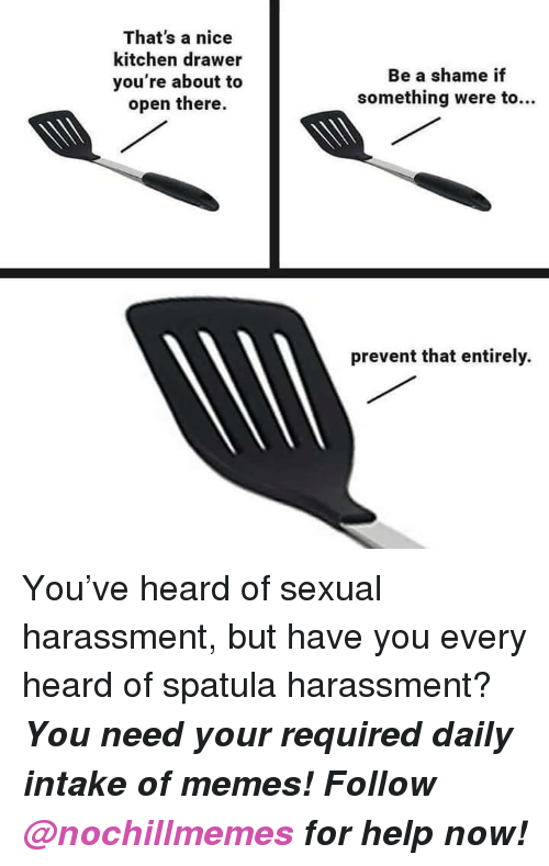 Memes, Help, and Nice: That's a nice  kitchen drawer  you're about to  open there.  Be a shame if  something were to...  prevent that entirely. <p>You've heard of sexual harassment, but have you every heard of spatula harassment?</p><p><b><i>You need your required daily intake of memes! Follow <a>@nochillmemes</a> for help now!</i></b><br/></p>