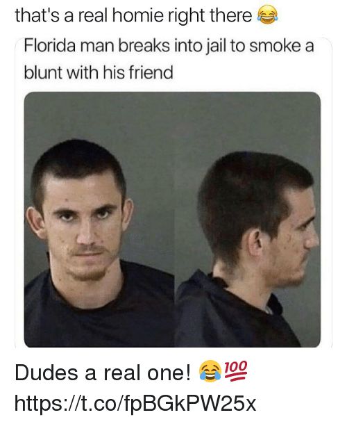 Florida Man, Homie, and Jail: that's a real homie right there  Florida man breaks into jail to smoke a  blunt with his friend Dudes a real one! 😂💯 https://t.co/fpBGkPW25x