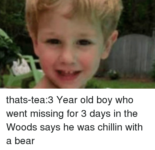 Tumblr, Bear, and Blog: thats-tea:3 Year old boy who went missing for 3 days in the Woods says he was chillin with a bear