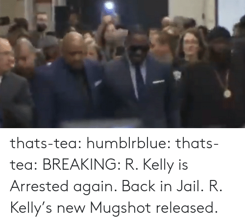 Jail, R. Kelly, and Tumblr: thats-tea: humblrblue:  thats-tea:  BREAKING: R. Kelly is Arrested again. Back in Jail.   R. Kelly's new Mugshot released.