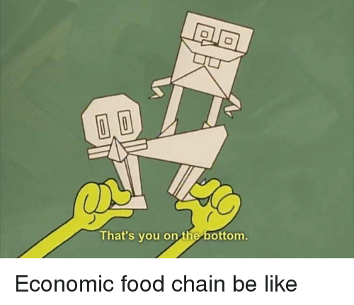 Bottom of food chains