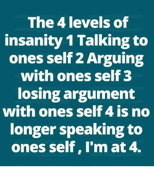 Memes, Insanity, and 🤖: The 4 levels of  insanity 1 Talking to  ones self 2 Arguing  with ones self 3  losing argument  with ones self 4 is no  longer speaking to  ones self, I'm at 4