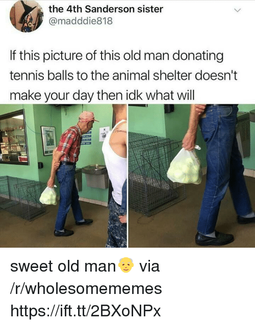 Old Man, Animal, and Animal Shelter: the 4th Sanderson sister  @madddie818  If this picture of this old man donating  tennis balls to the animal shelter doesn't  make your day then idk what will sweet old man👴 via /r/wholesomememes https://ift.tt/2BXoNPx