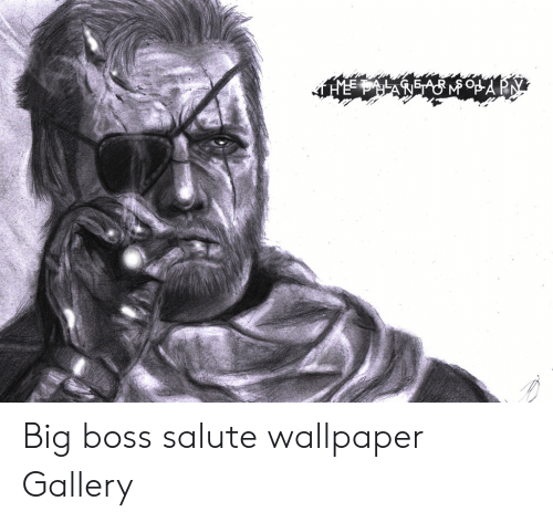 The Aa Ap Big Boss Salute Wallpaper Gallery Wallpaper Meme