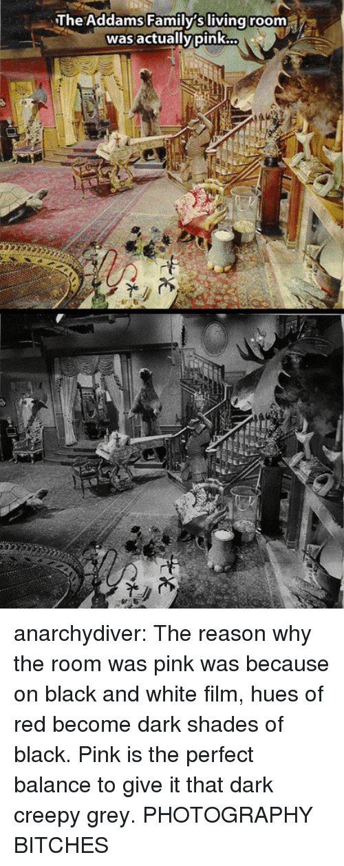 Creepy, Tumblr, and Black: The Addams Family's living room  was actuallypink anarchydiver: The reason why the room was pink was because on black and white film, hues of red become dark shades of black. Pink is the perfect balance to give it that dark creepy grey. PHOTOGRAPHY BITCHES
