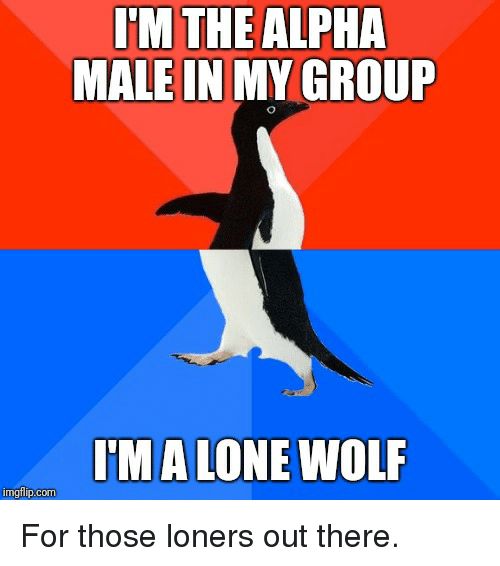 Wolf, Advice Animals, and Com: THE  ALPHA  MALE IN MY GROUP  I'M A LONE WOLF  imgfilp.com For those loners out there.