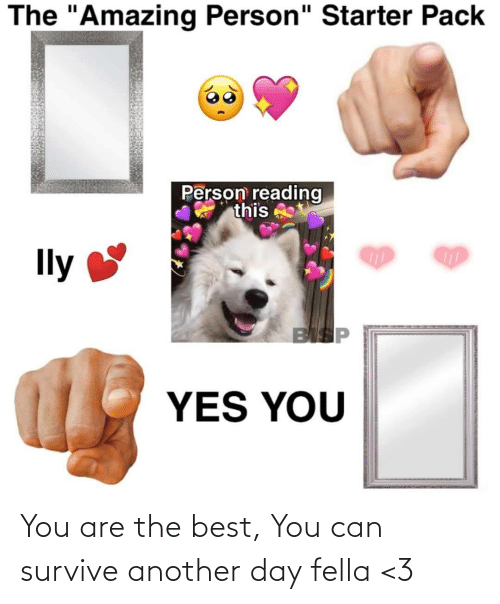 """Best, Starter Pack, and Amazing: The """"Amazing Person"""" Starter Pack  Person reading  this  Ily  BISP  YES YOU You are the best, You can survive another day fella <3"""