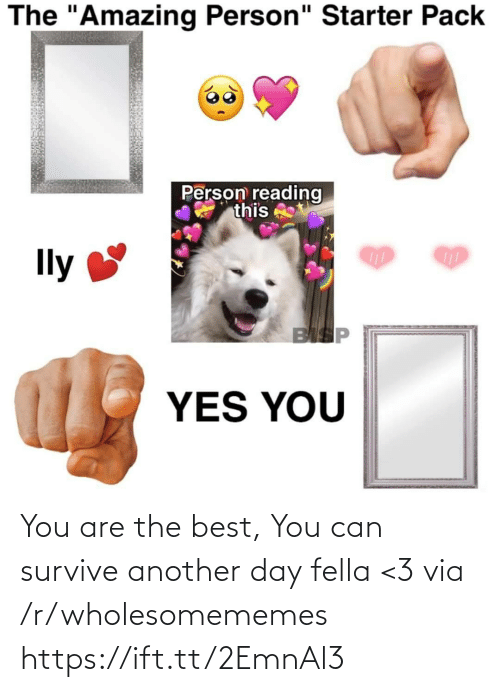 """Best, Starter Pack, and Amazing: The """"Amazing Person"""" Starter Pack  Person reading  this  Ily  BISP  YES YOU You are the best, You can survive another day fella <3 via /r/wholesomememes https://ift.tt/2EmnAl3"""
