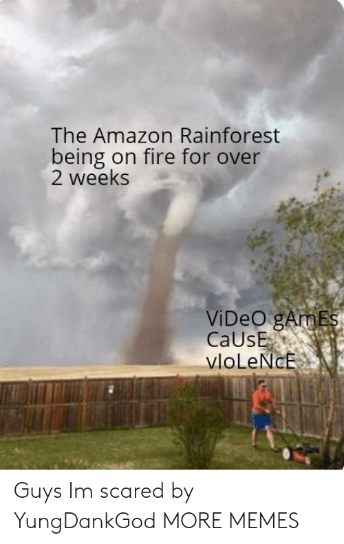 Amazon, Dank, and Fire: The Amazon Rainforest  being on fire for over  2 weeks  ViDeO gAmEs  CaUsE  vloLeNcE Guys Im scared by YungDankGod MORE MEMES