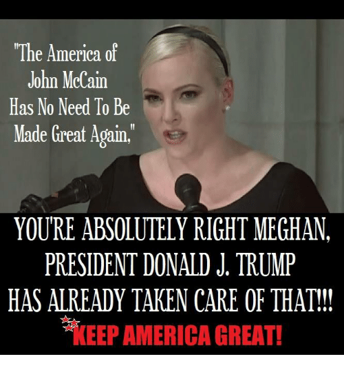 Meghan Mccain Hits Back At Donald Trump Again: The America Of John McCain Has No Need To Be Made Great