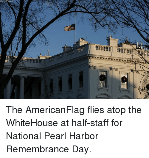 Memes, Pearl Harbor, and 🤖: The AmericanFlag flies atop the WhiteHouse at half-staff for National Pearl Harbor Remembrance Day.