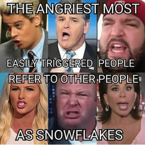 Memes, 🤖, and Reference: THE ANGRIEST MOST  EASILY TRIGGERED PEOPLE  REFER TO OTHER PEOPLE  ASSNOWFLAKES