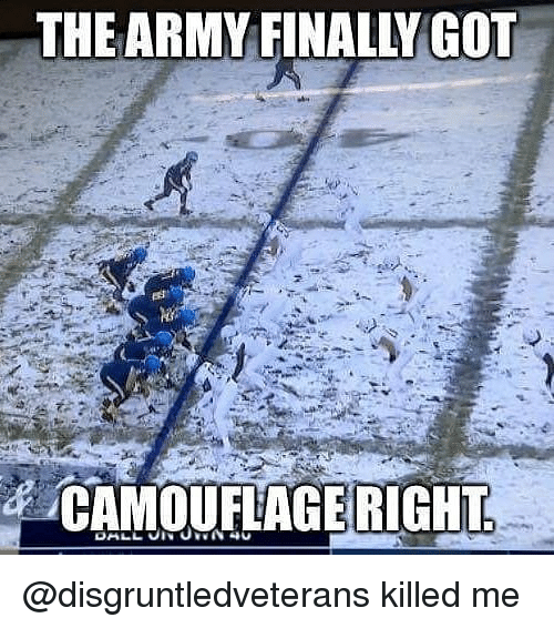 Memes, Army, and 🤖: THE ARMY FINALLY GOT  /CAMOUFLAGERIGHT @disgruntledveterans killed me