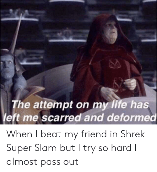 Life, Shrek, and Super: The attempt on my life has  left me scarred and deformed When I beat my friend in Shrek Super Slam but I try so hard I almost pass out