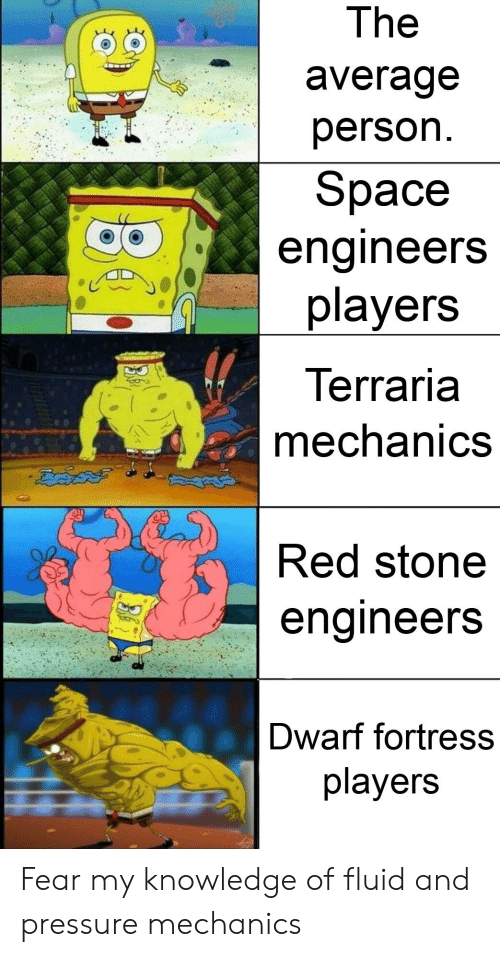 The Averade Person Space Engineers Players Terraria